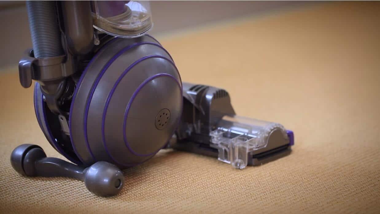 Dyson DC65 best vacuum cleaner for carpet reviews