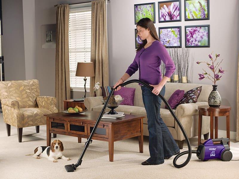 EUREKA 3684F-Violet vacuum for pet hair reviews