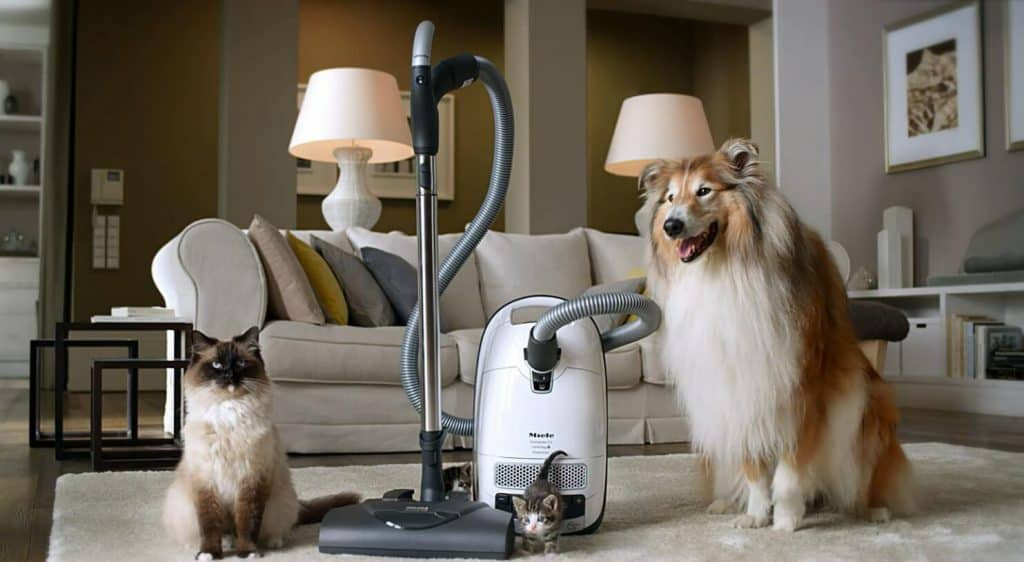 Miele Complete C3 vacuum for pet hair