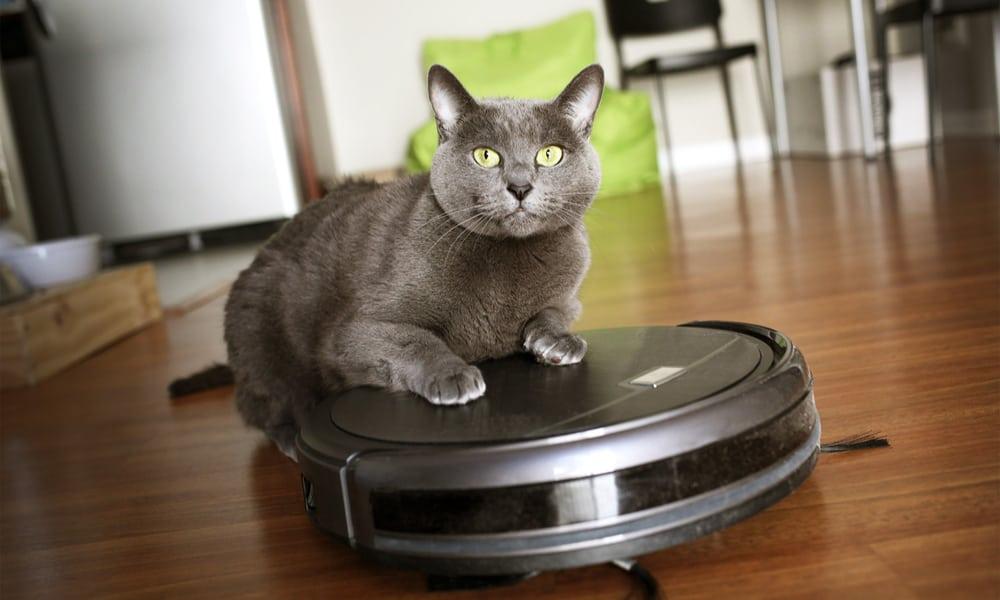 best robot vacuum for pets