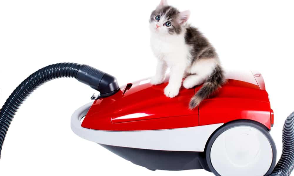 best vacuum cleaner for pet hair