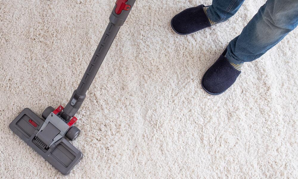 cordless pet vacuum