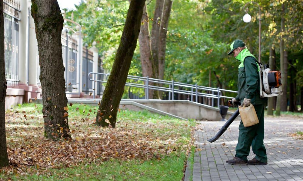 Backpack Leaf Blowers
