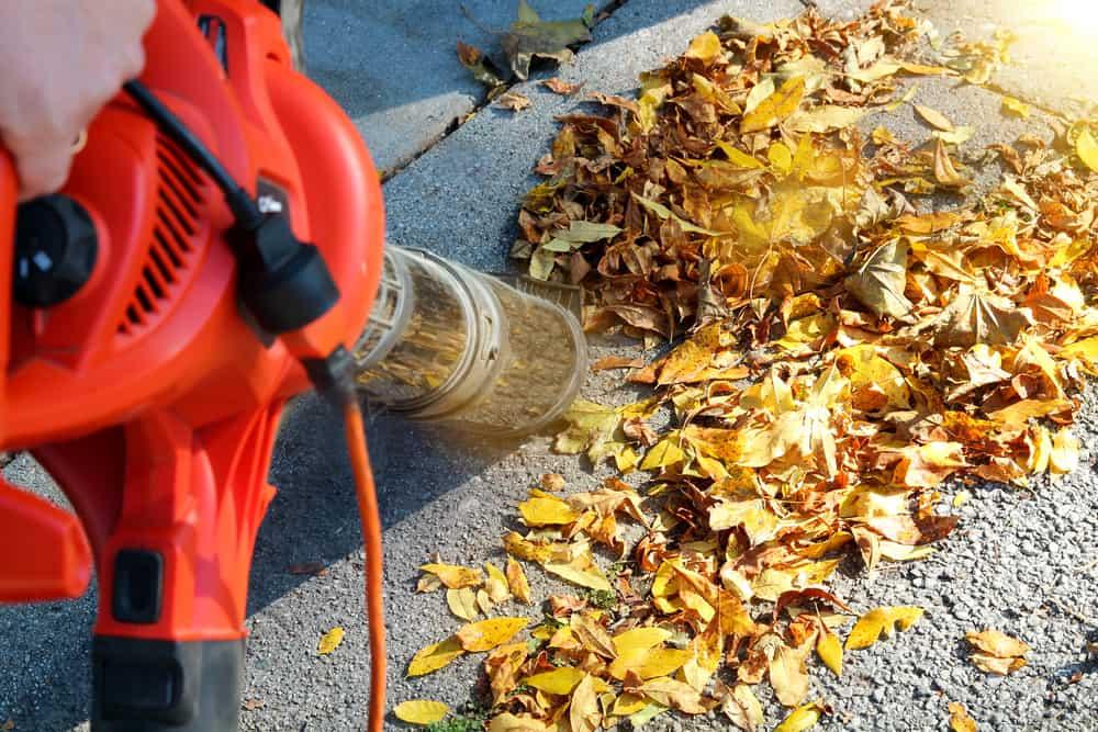 Corded Leaf Blowers