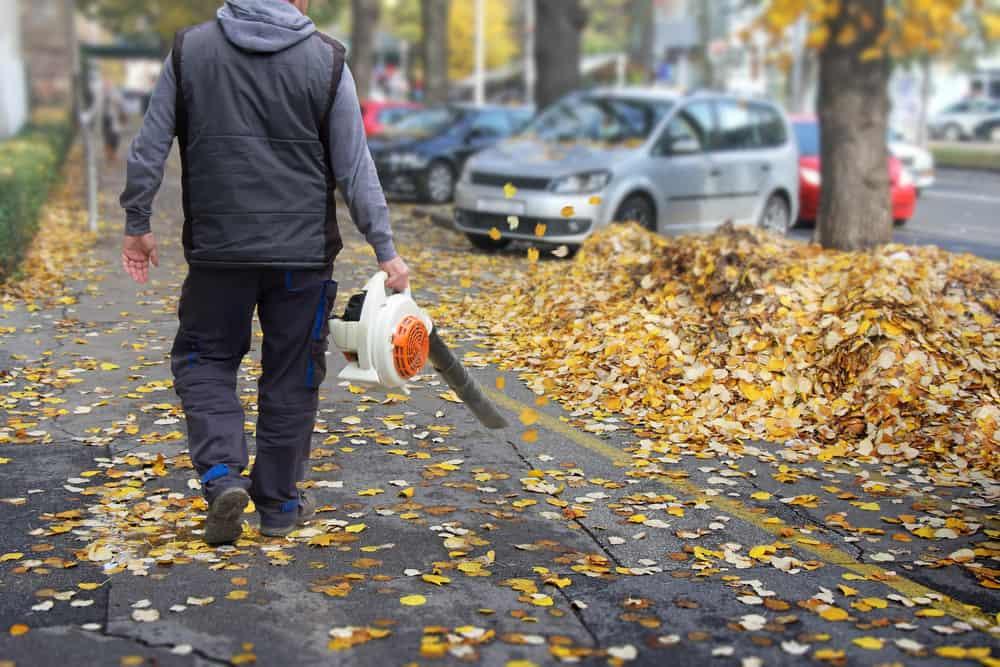 Handheld Leaf Blowers
