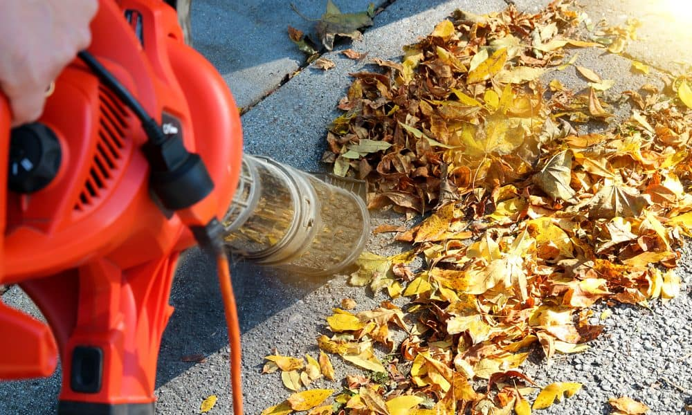 Types Of Leaf Blowers