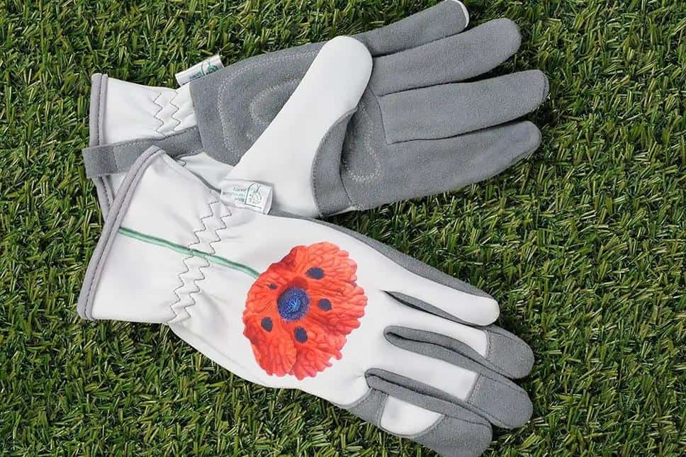 A pair of gardening gloves