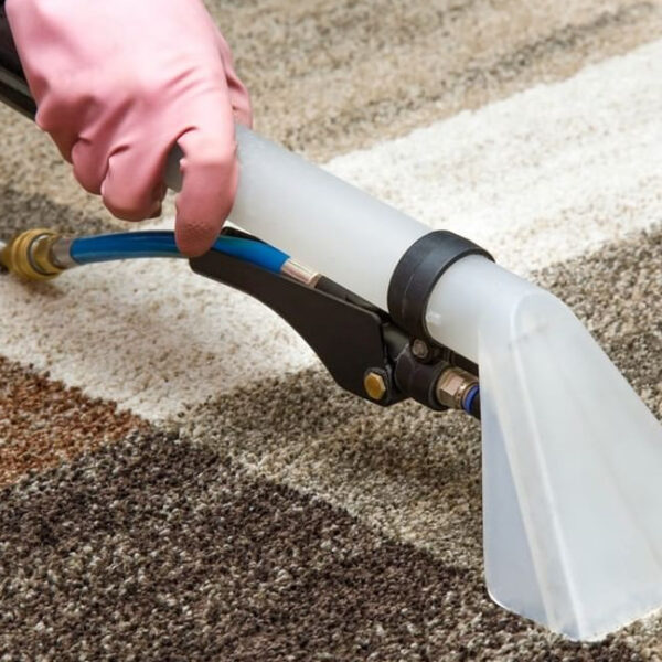 6 Reasons to Get Your Carpets Professionally Cleaned
