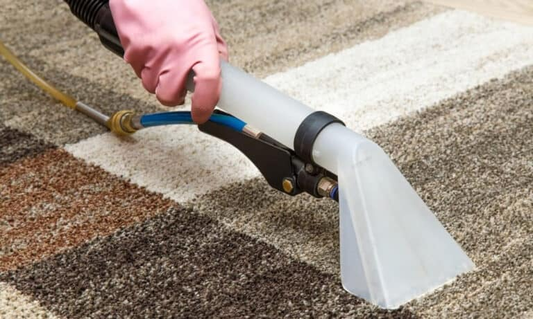 Reasons to Get Your Carpets Professionally Cleaned