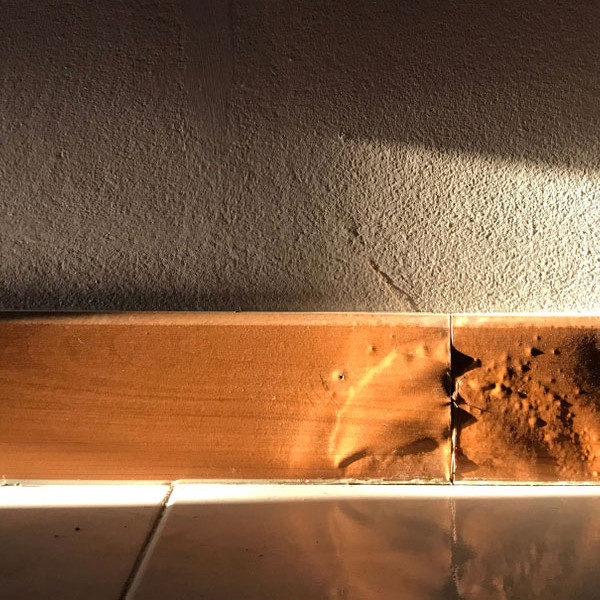 What Causes Water Damage to Your Home's Baseboards and How to Deal with Them?
