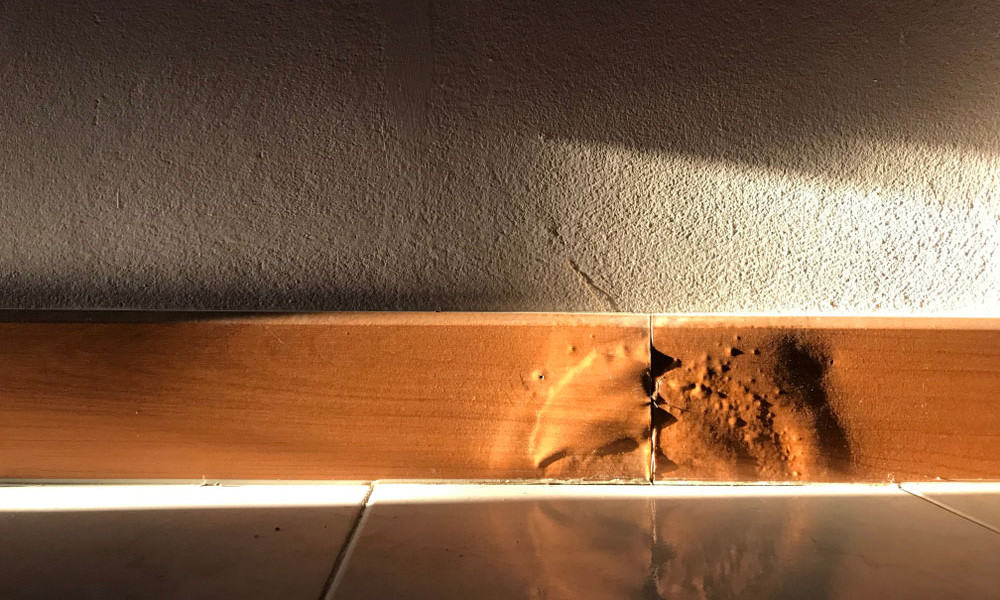 What Causes Water Damage to Your Home's Baseboards and How to Deal with Them